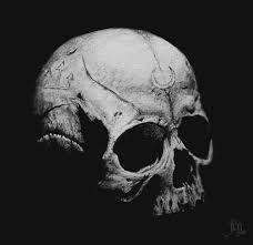 human skull - Buscar con Google