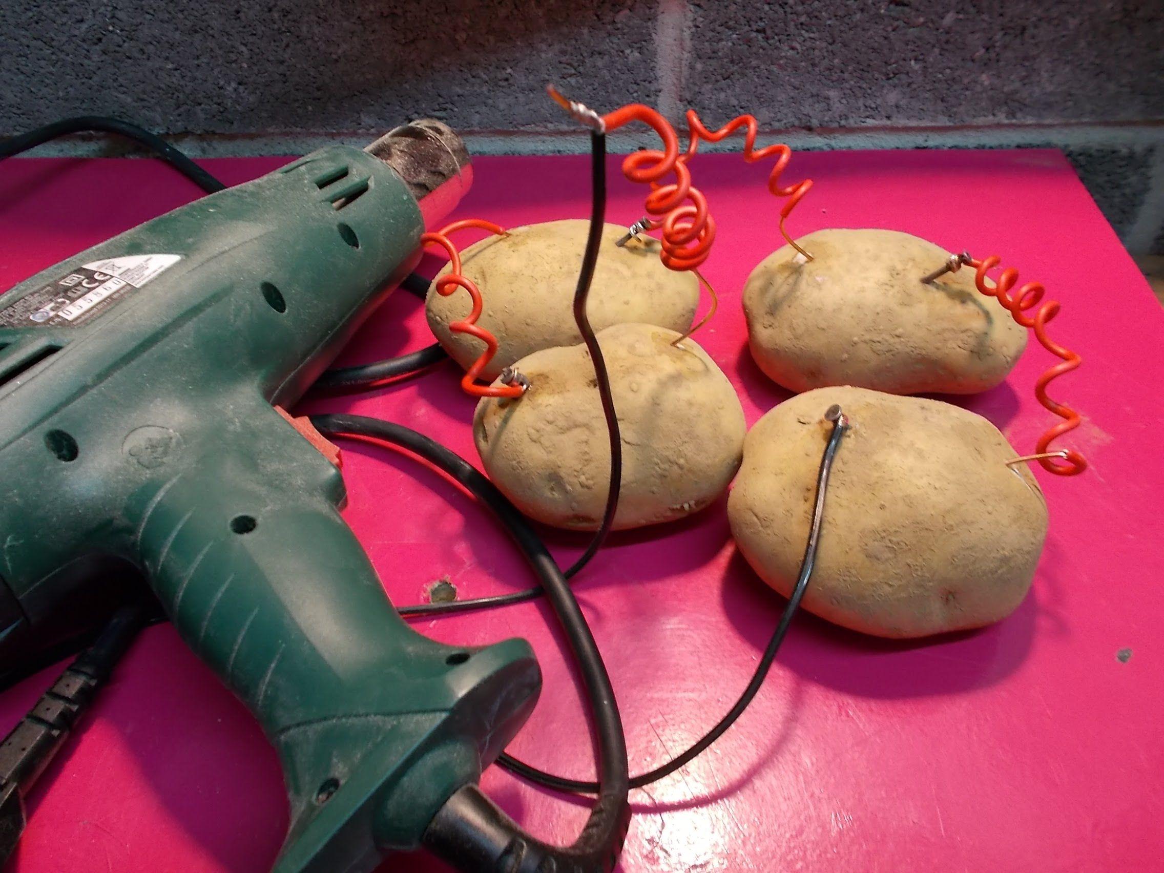 electricit gratuite le generateur a pomme de terre haute puissance - Puissance Electrique Maison Individuelle