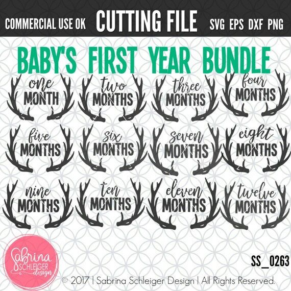 New Svg Bundle Perfect For Taking Baby Milestone Photos Baby Milestone Photos Crafts By Month Svg