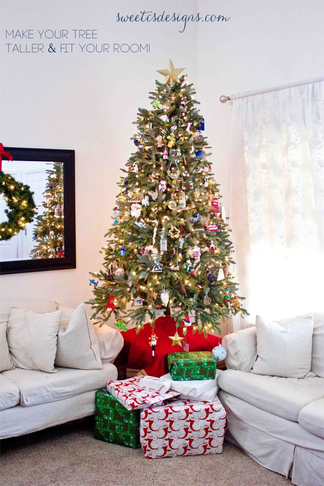 Make Your Tree Taller This Is An Awesome Tip To Use Smaller