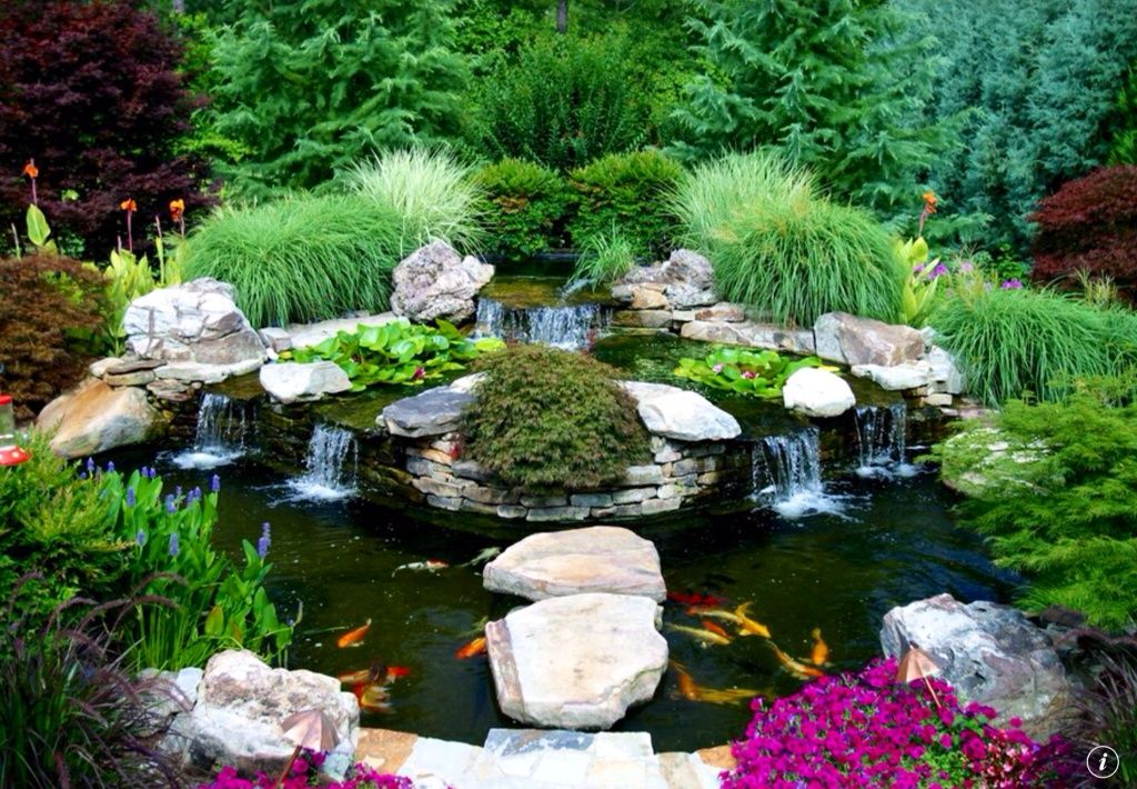 Asian landscape yard with waterfall feature pond perry 39 s for Koi pool water gardens thornton