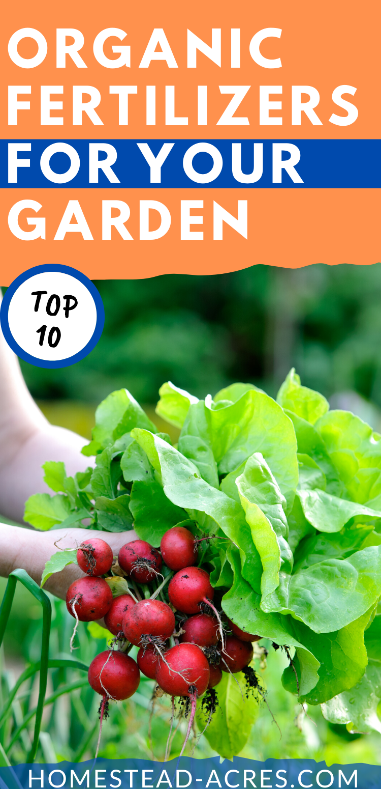 10 Best Organic Fertilizers For Your Vegetable Garden Organic Fertilizer For Vegetables Organic Fertilizer Vegetable Garden