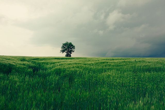 Approaching storm by Thuyhn, via Flickr