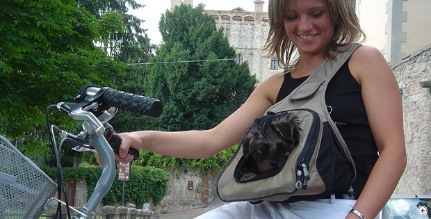 Adapt for horseback riding? Marsupack dog carrier | Bling for Dogs ...