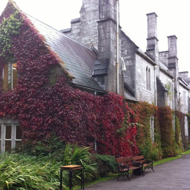 Cork University, Ireland
