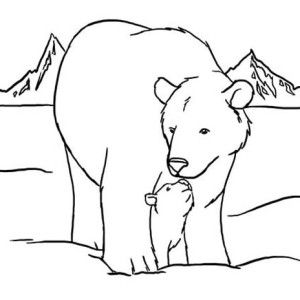 Arctic Animals Polar Bear Walking Around Coloring Page: Arctic ...