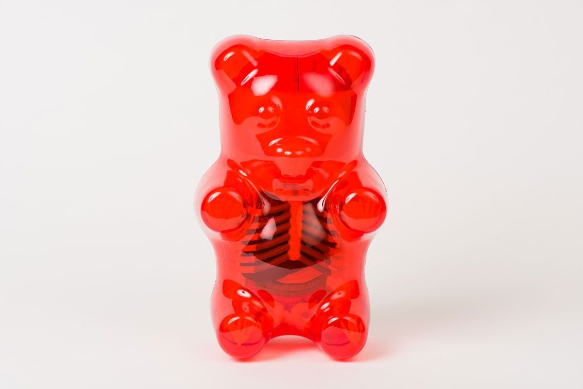 Gummi Bear Funny Anatomy | Gummi bears and Products
