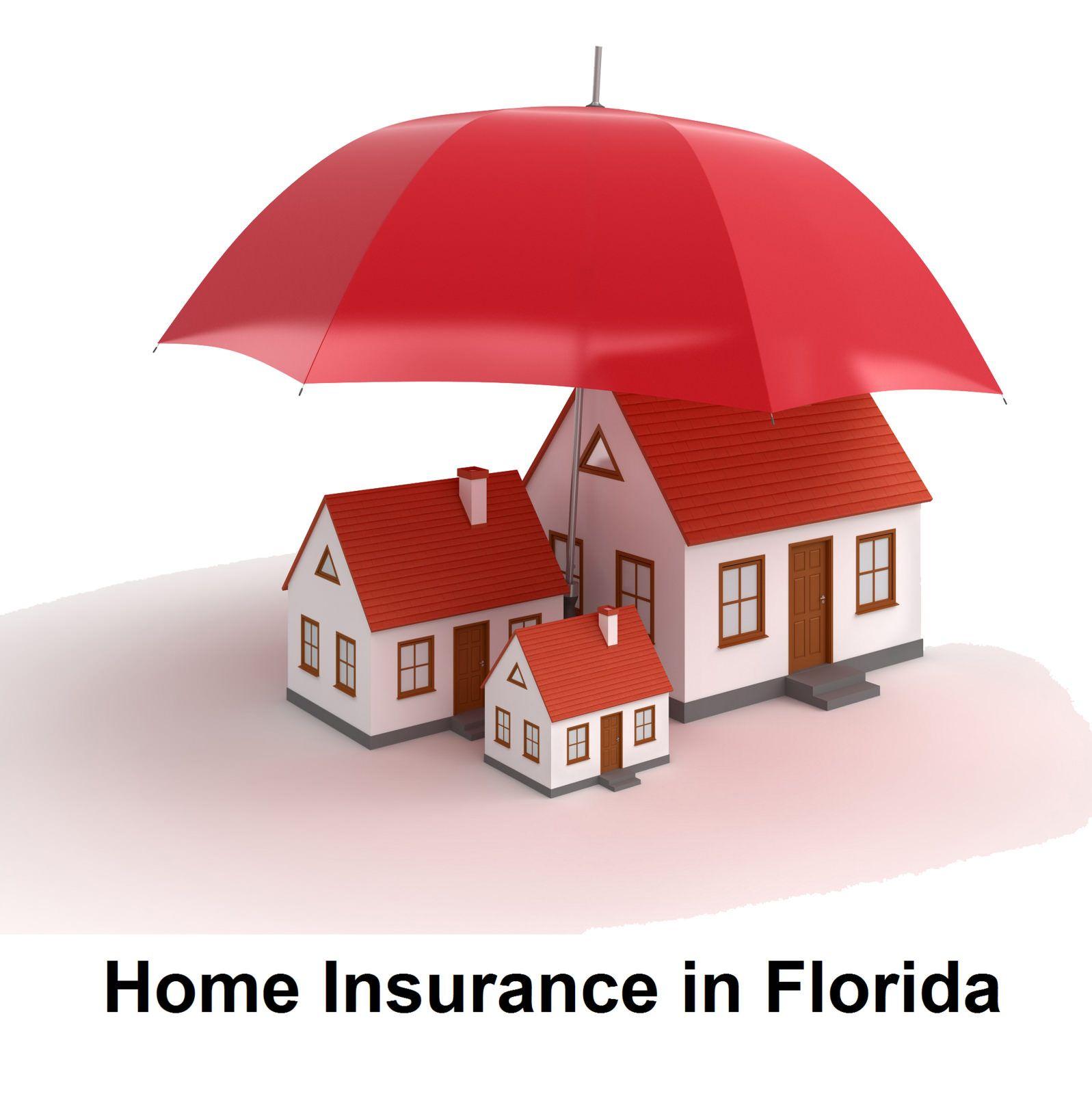 Florida With Images Umbrella Insurance National Life Insurance Car Insurance