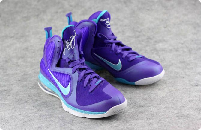 a5df2c04ef9 price of lebron james blue and purple flight shoes