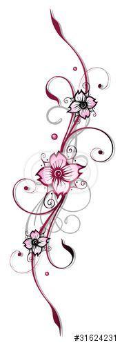 vektor ranke kirschbl ten flora blumen bl ten cherry. Black Bedroom Furniture Sets. Home Design Ideas