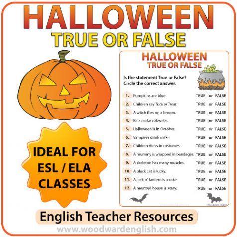 Do Does worksheet   Free ESL printable worksheets made by teachers