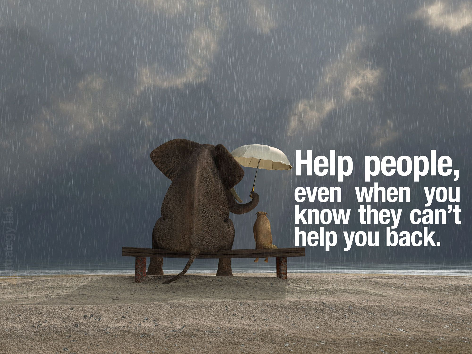 Quotes About Helping Helping Othersvolunteer Philanthropyif You Are Helping