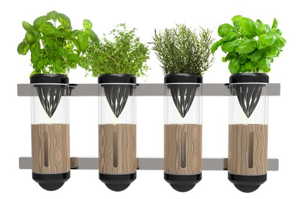 Hydroponics At Home Hydroponic Vegetables Hydroponic Gardening System Home Hydroponics