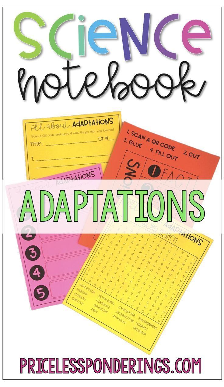 Animal Adaptations Activity and Interactive Notebook
