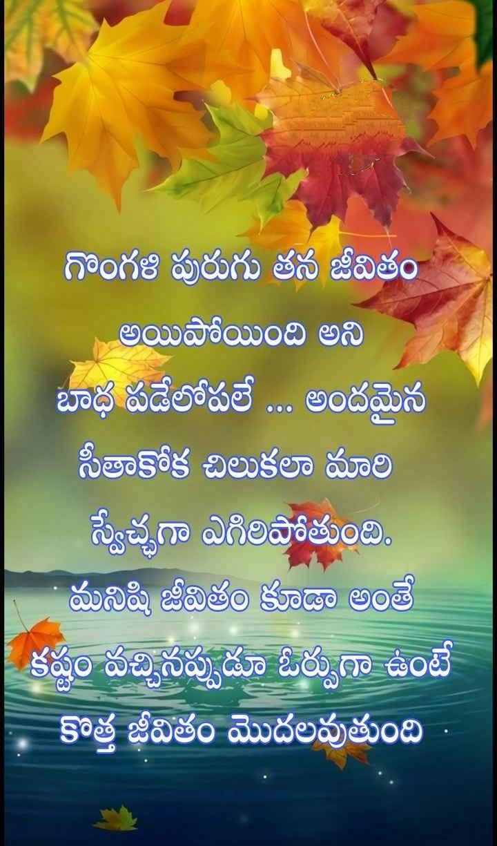 Pin By My Own On Quotes Telugu Inspirational Quotes Life Lesson Quotes Life Quotes