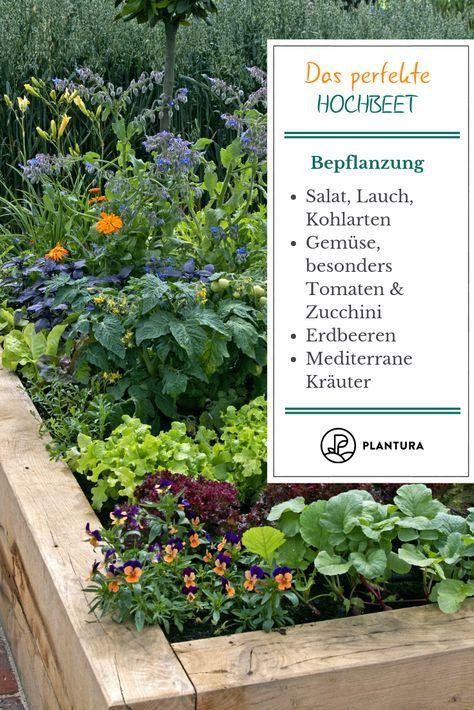 10 Tipps für das perfekte Hochbeet - Plantura