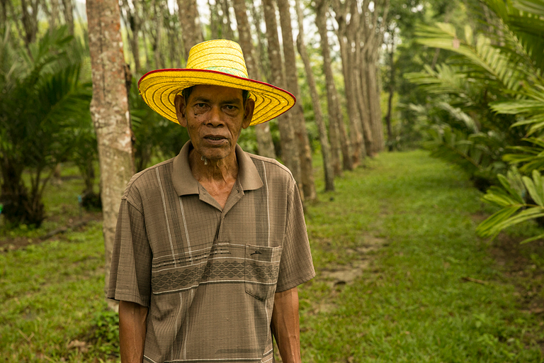 How rubber farmers can reduce risk and help the