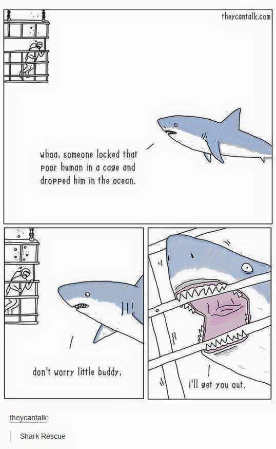 Latest Funny Cartoons Imgur Misunderstood Shark. #Imgur 5