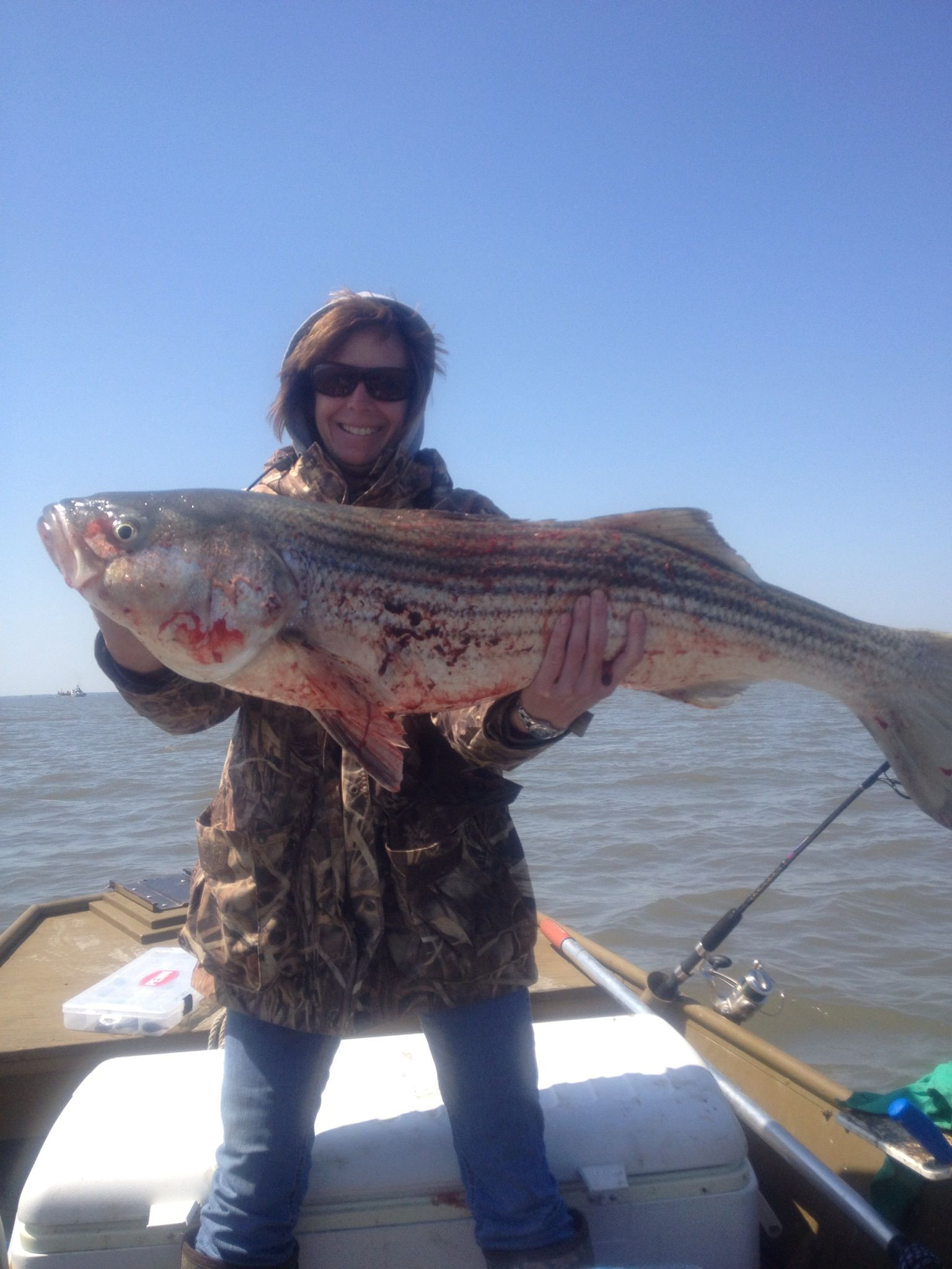 how to catch striped bass in nj