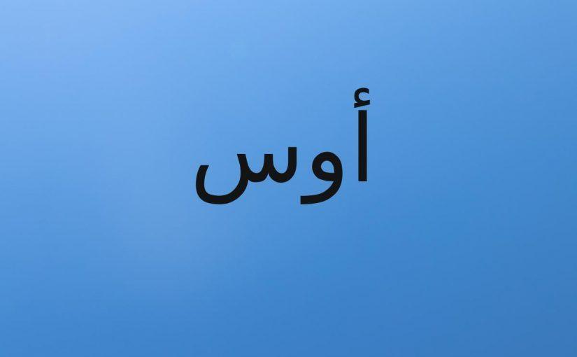 ما معنى اسم أوس Aws في اللغة العربي وصفاته موقع مصري In 2021