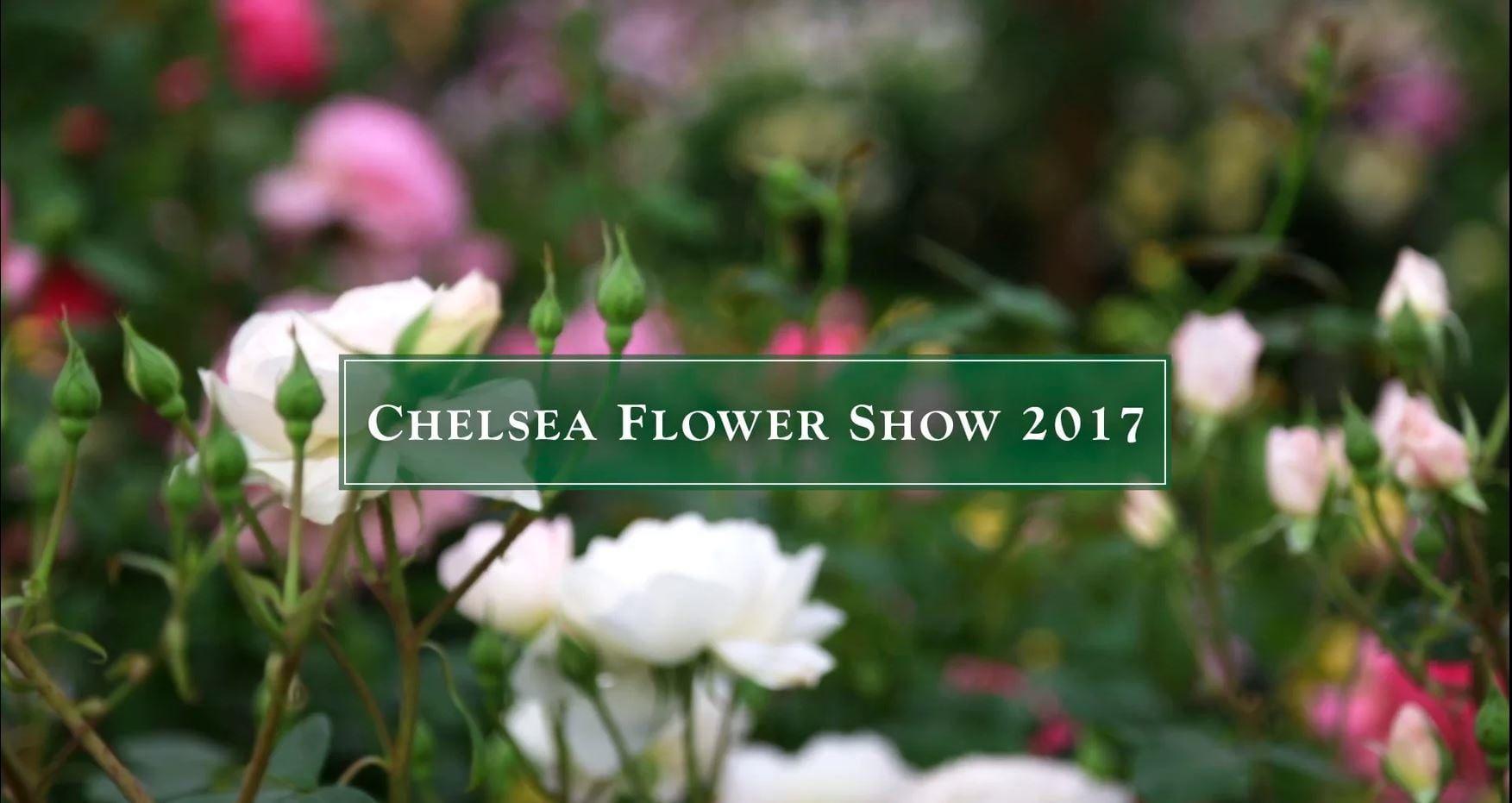 RHS Chelsea Flower Show 2017