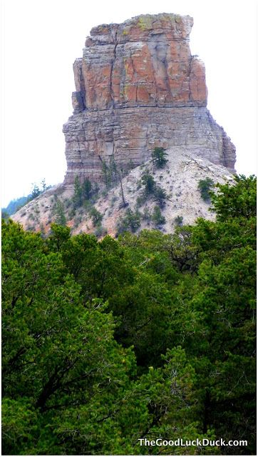 Datil Well Blm Campground New Mexico Pie Town New