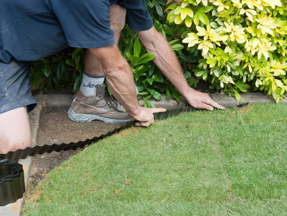 How To Shape A Lawn Or Garden Space Lawn Care Lawn And Garden Aerate Lawn