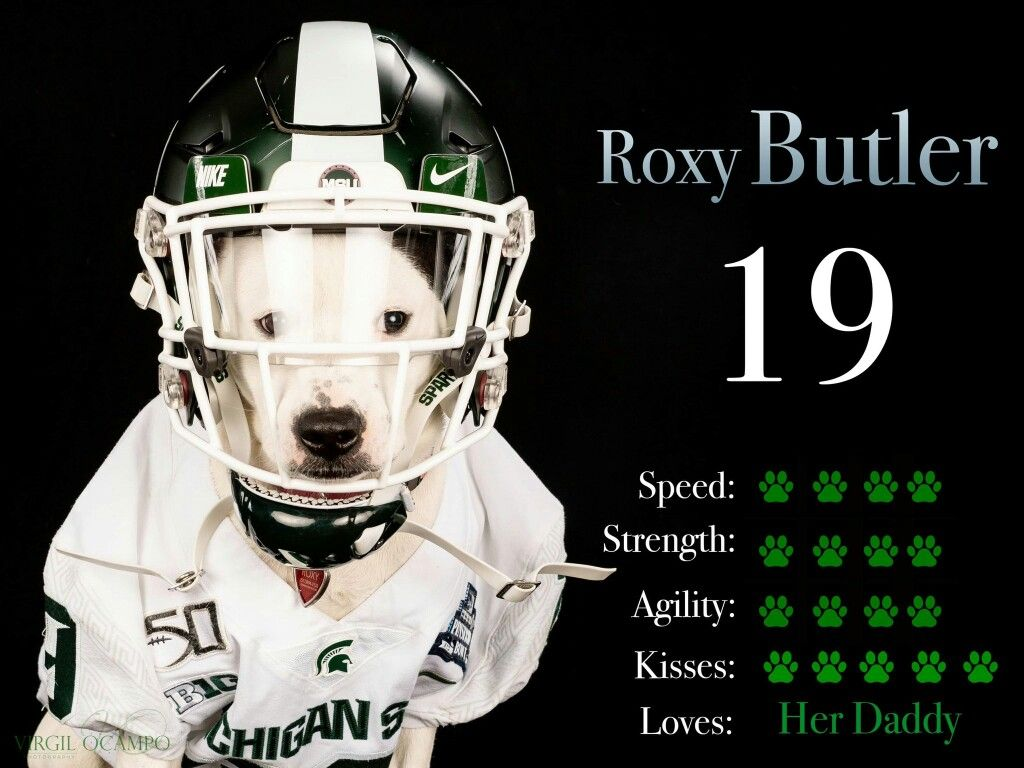 Pin By Ruthelise On Michigan State In 2020 Football Helmets Michigan State Agile