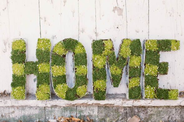 Spell out words with moss/succulents, etc.