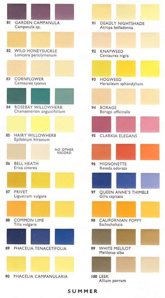 Pollen color chart developed by mrs dorothy hodges in to illustrate that matches the of its flower source also rh pinterest
