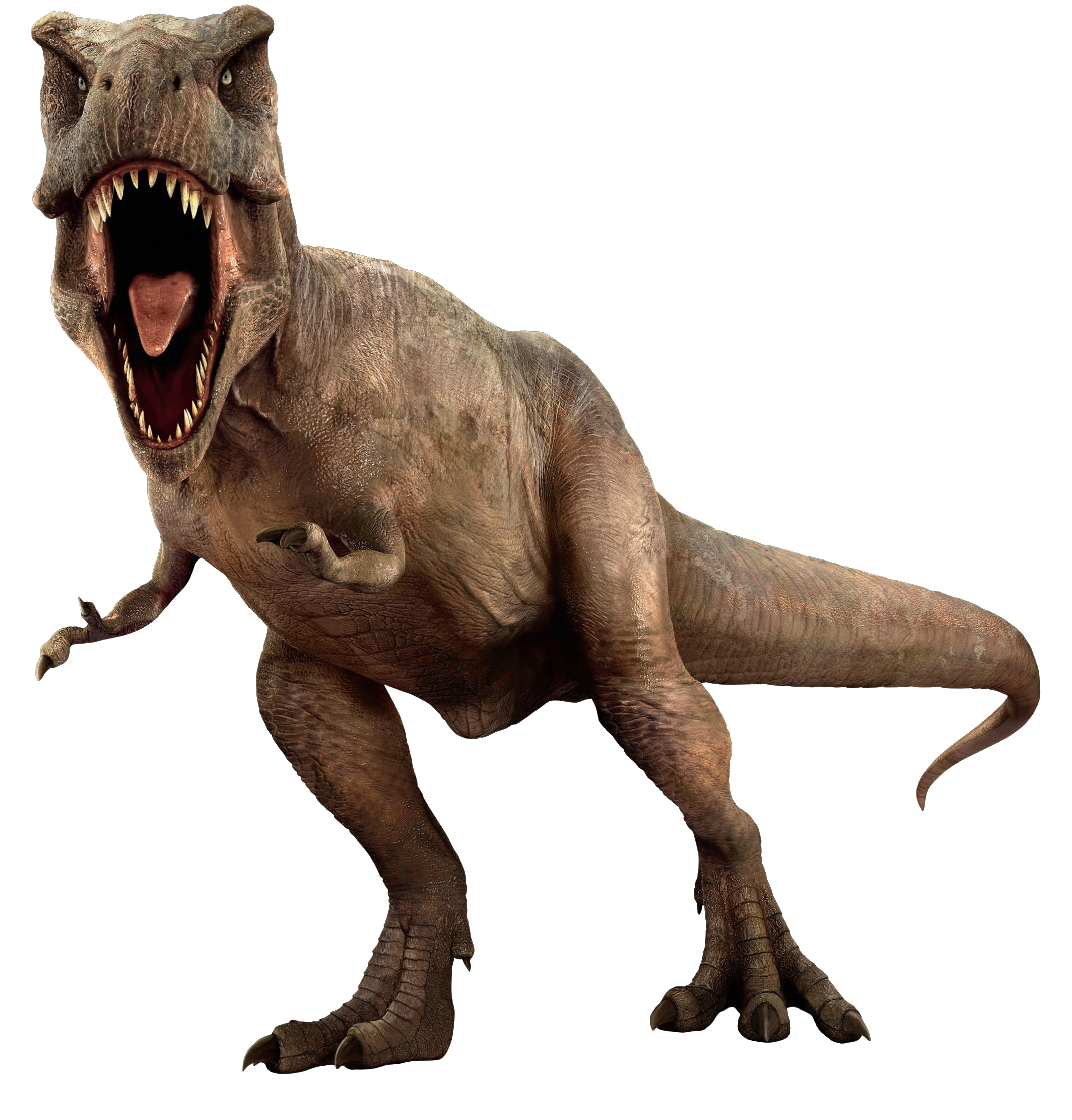 Jurassic World Tyrannosaurus Rex V4 By Sonichedgehog2