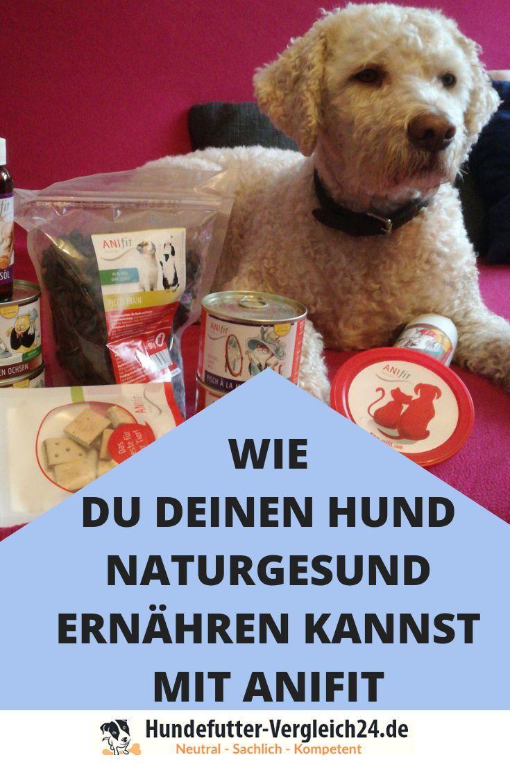 Anifit Nassfutter im Vergleich (mit Bildern) Hunde