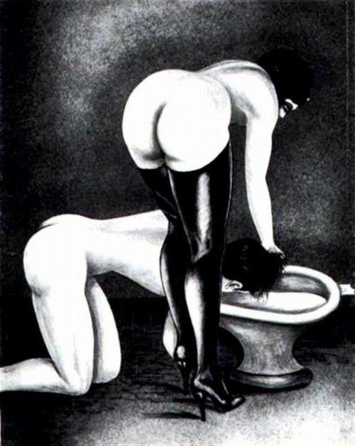 Male sub toilet training erotic literature