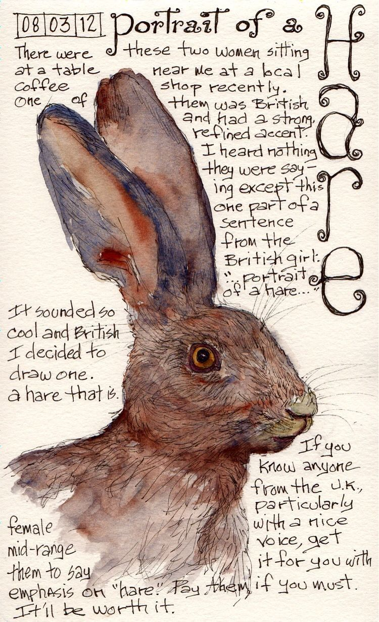 Pin By Adam Huff On The Herbal Wizard Bunny Art Sketch Book Rabbit Art