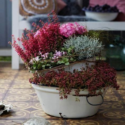 ideas for your balcony and terrace in autumn  BLOOMs  balcony and terrace tips for decorating and planting outdoors Romantic planting ideas for your balcony and terrace i...