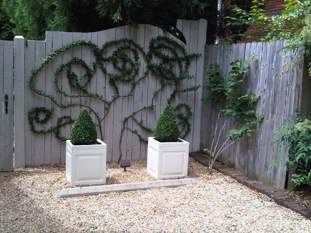 Wire Trellis Ideas Part - 29: Use Either Wire Or Tree Branches As A Trellis Structure