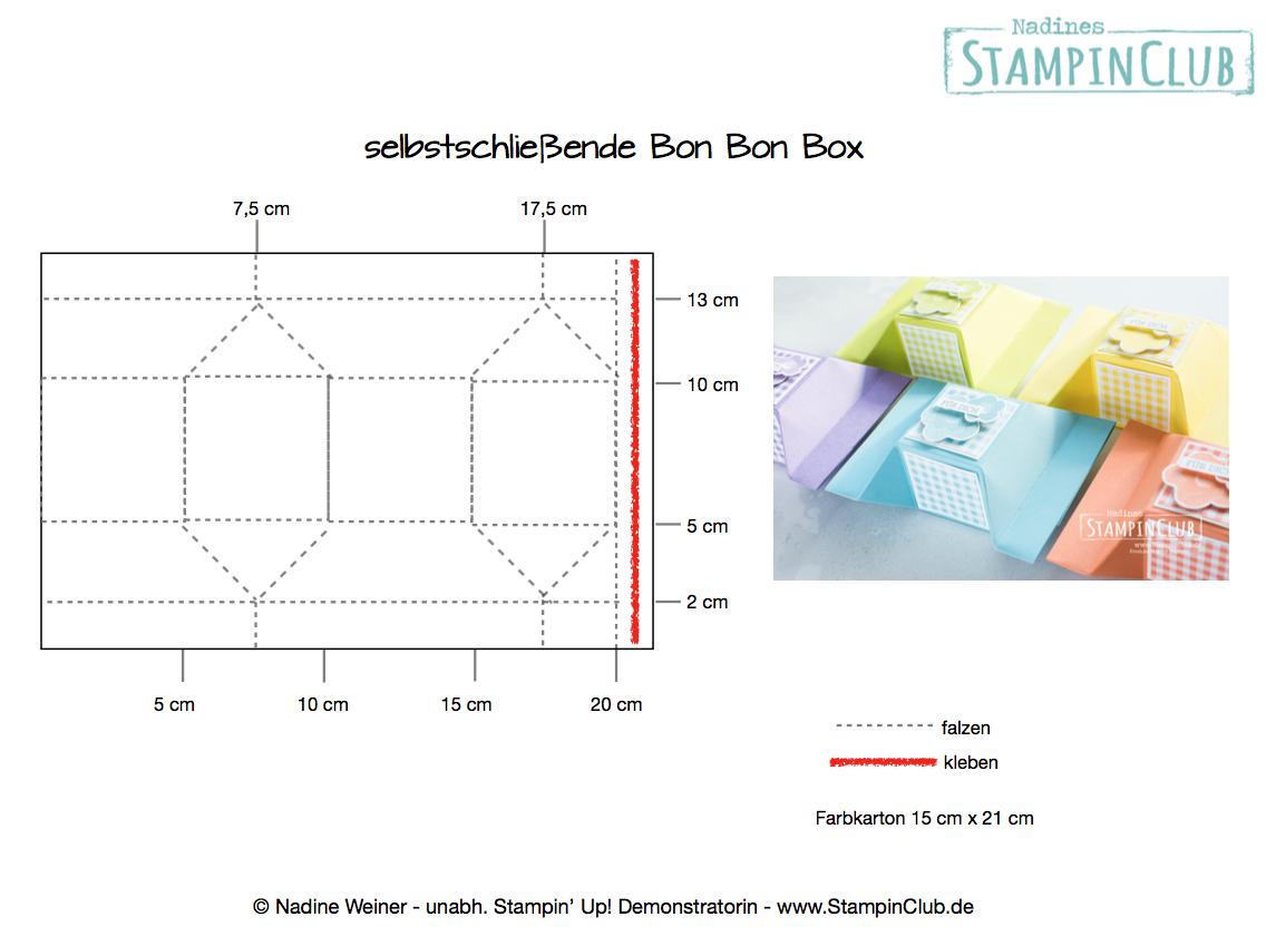 Hier Ist Die Anleitung Fur Die Selbstschliessende Bonbon Verpackung Mit Aktuellen Stampin Up Produkten Aus Dem Fruhj Verpackung Anleitungen Schachteln Basteln