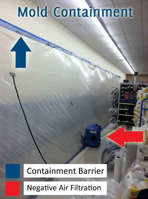 Proper Mold Containment Is Key During The Remediation Process Removal Costs
