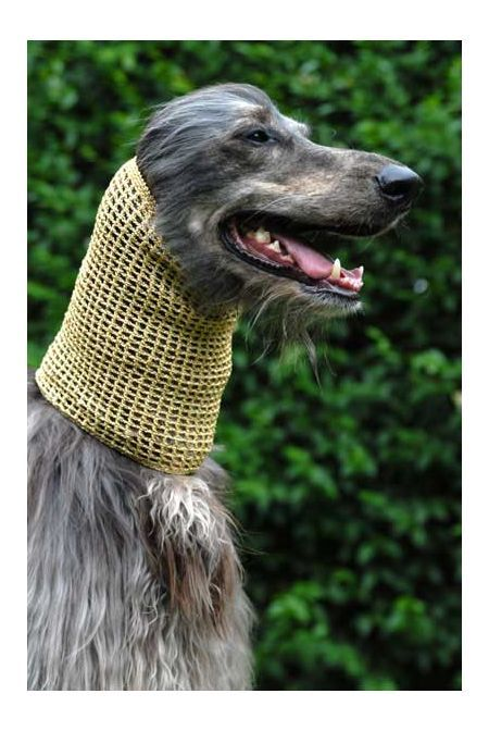 Sparkle crochet dog snood - made to order