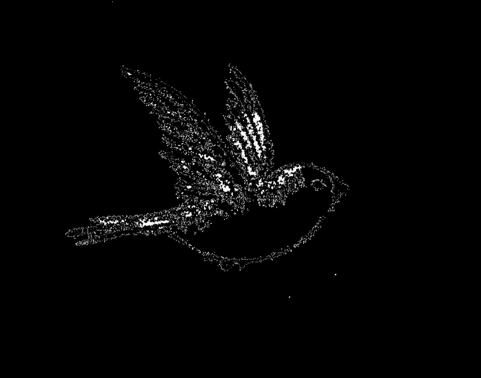 Little Bird Little Bird Tattoos Flying Bird Tattoo Bird Drawings