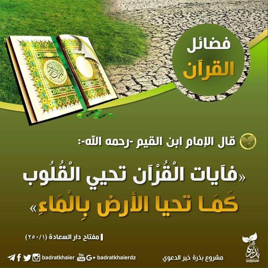 Pin On The Noble Quran القرآن الكريم