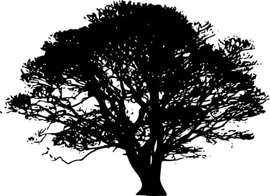 Tree Silhouettes Tree Silhouettes 5 Public Domain Clip Art Image Wpclipart Com Silhouette Clip Art Oak Tree Silhouette Tree Silhouette