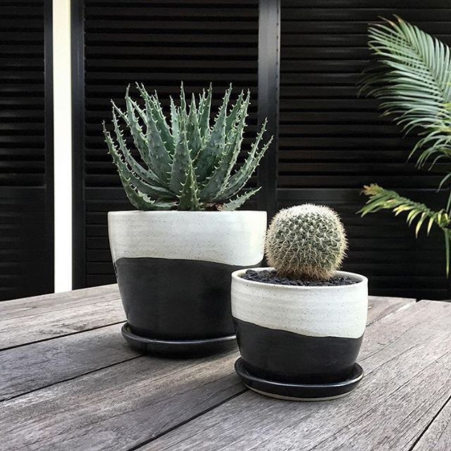 Cute Office Desk Plants And Planters From Etsy Desk Plants Office Plants Desk Cute Office