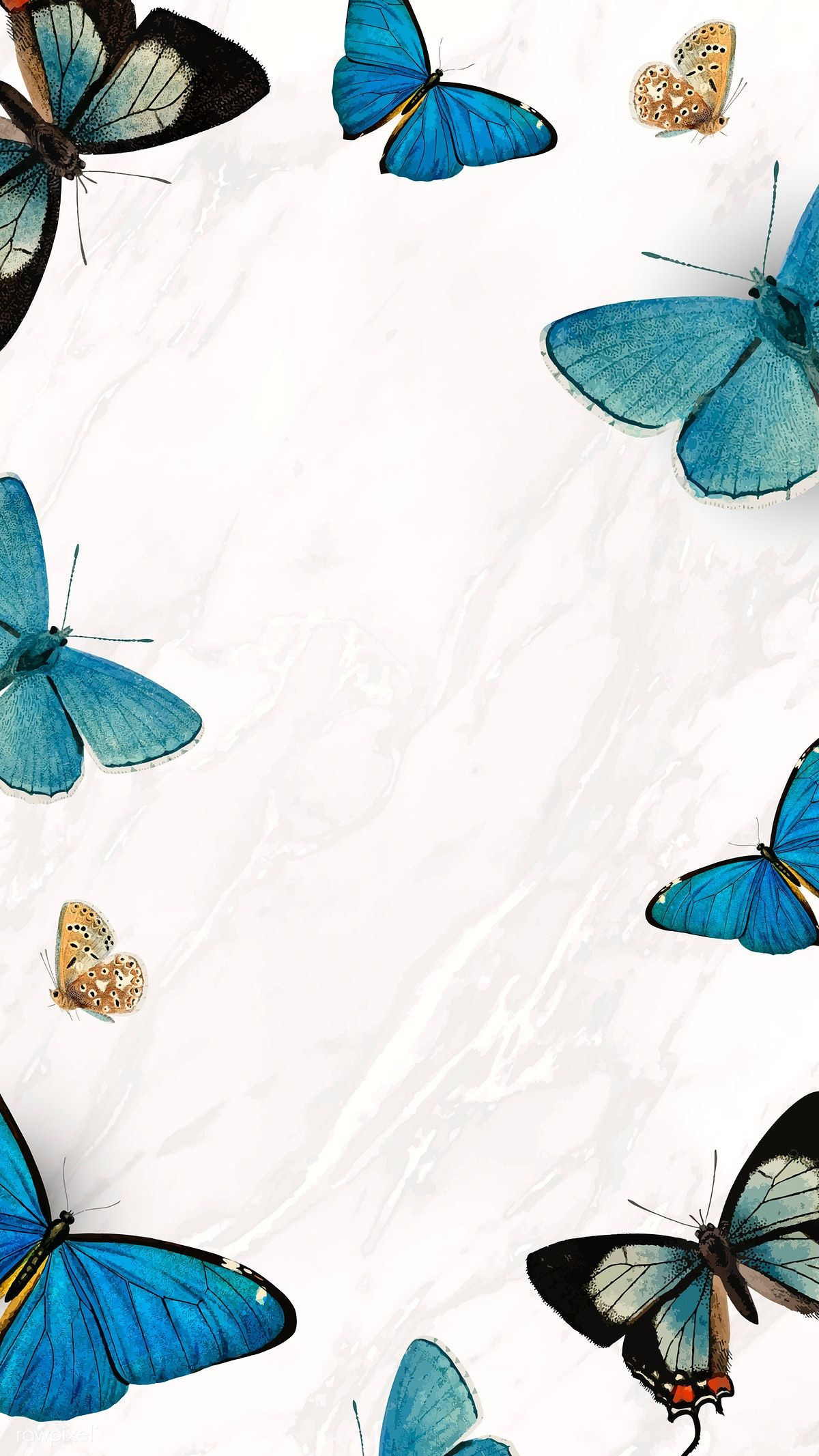 Download premium vector of Blue butterflies patterned on white mobile