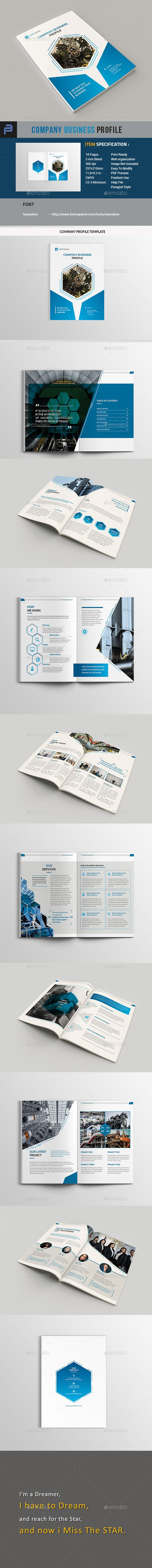 Professional Business Profile Template Company Business Profile  Brochures Corporate Brochure And .