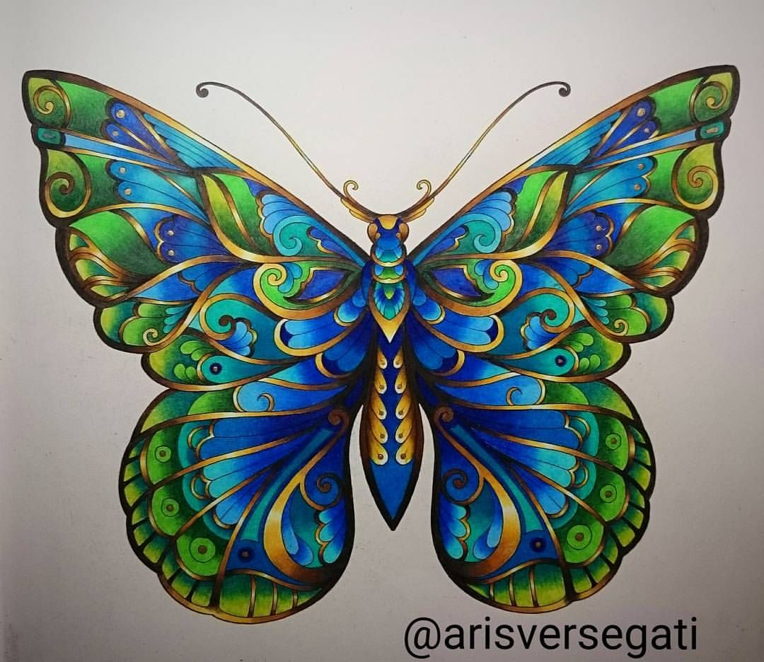 Prismacolor Polychromos Magicaljungle Selvamagica Selvamagicaoficial Colorindolivro Basford Coloring Book Johanna Basford Coloring Book Coloring Book Art