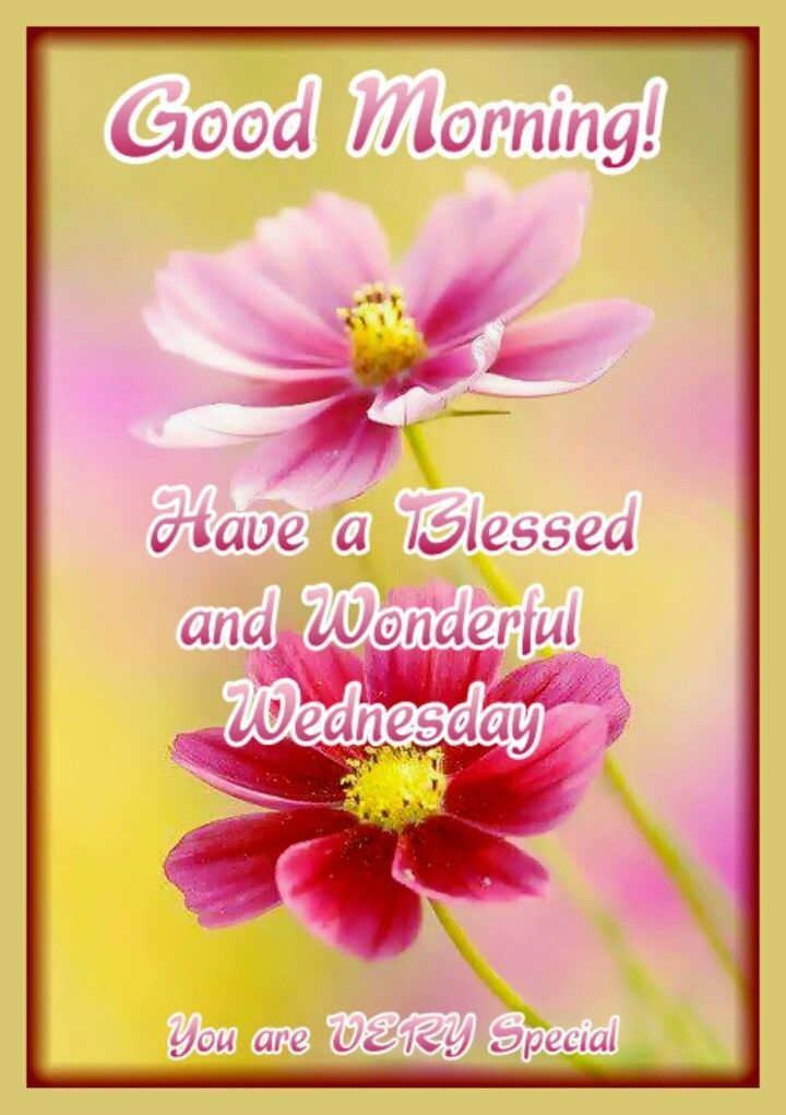 Good Morning Have A Blessed And Wonderful Wednesday Quotes Good