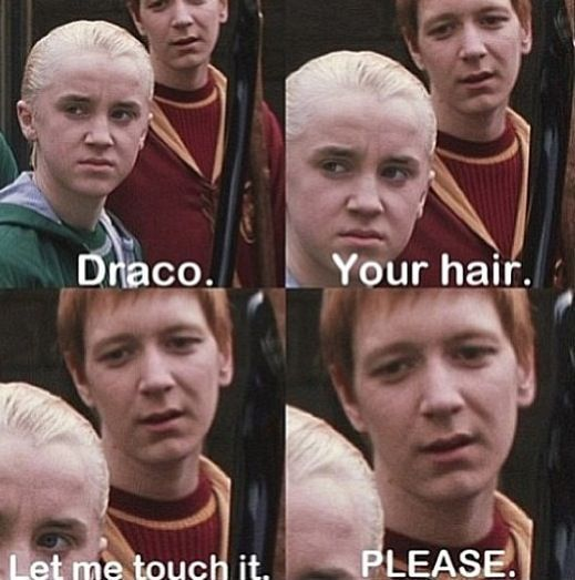 Harry Potter Memes - Nur ein wahrer Potterhead kann verstehen (Teil 3) - #Harry #Memes #Part #Potter #Potterhead-#harry #memes #potter #potterhead #verstehen #wahrer #newyearwallpaper