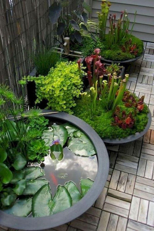 33 Glamorous Small Garden Design Ideas For Your Backyard To Have In 2020 Container Water Gardens Indoor Water Garden Garden Landscaping Diy