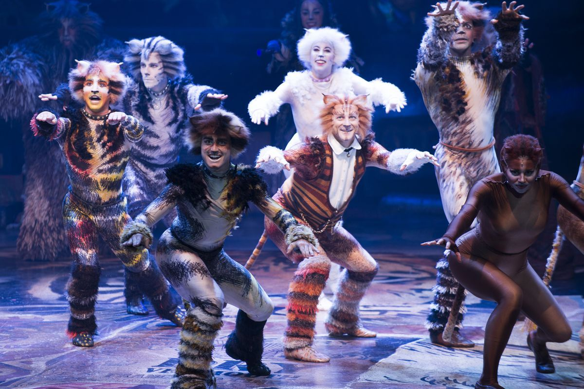 Quick Fire News Cats Starkid And More Cat Movie Jellicle Cats Cats Musical